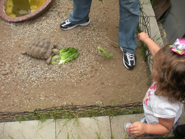 Karina feeding Darwin
