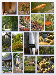 Huntington Library Collage