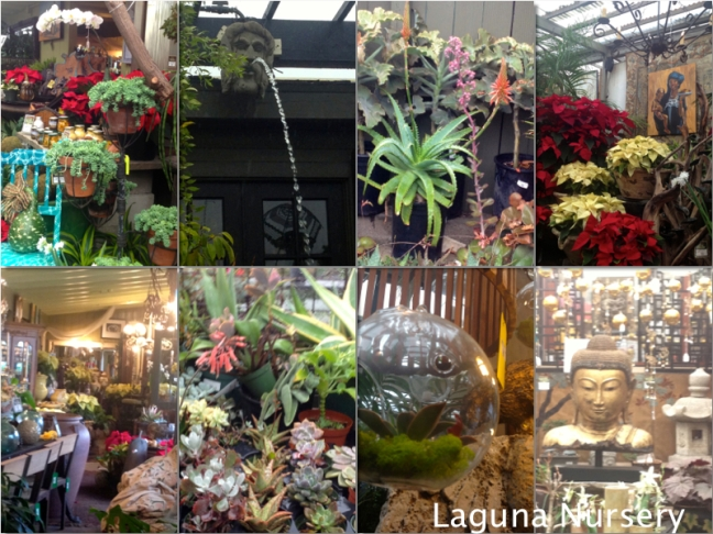 Laguna Nursery Collage