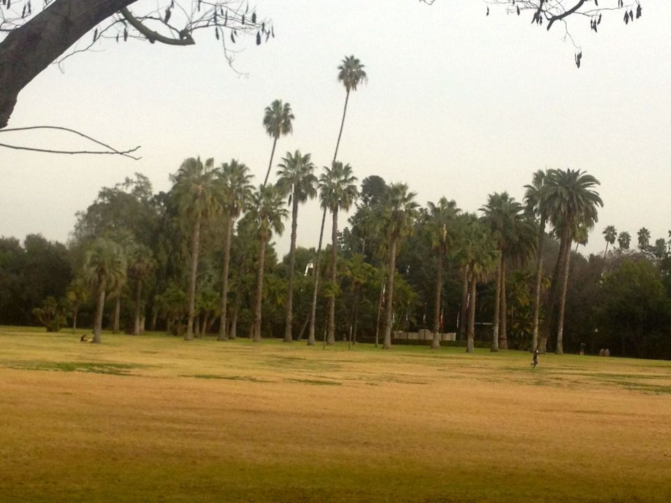 Former lake area in Lacy Park