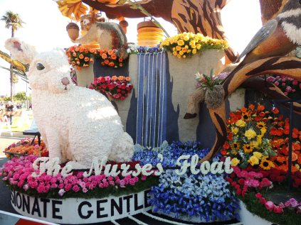 The Nurses Float