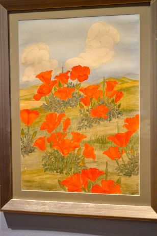 California Poppy Art
