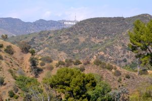 Hollywood Sign is visible from inside the Bowl.