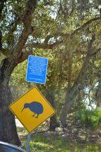 Kiwi Crossing Croad Vineyard