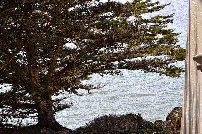 Bluff over Morro Bay