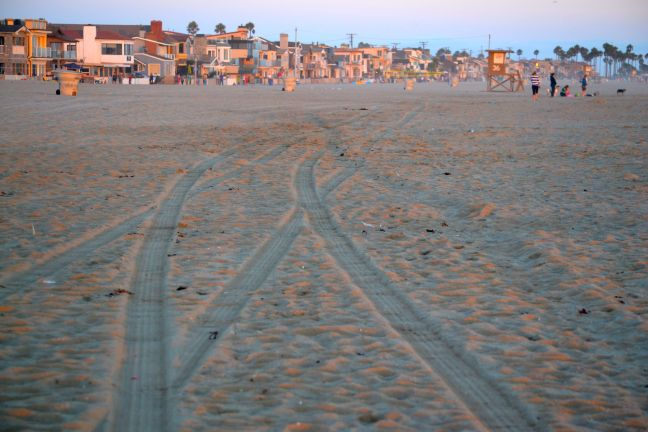 Life Guard Tracks