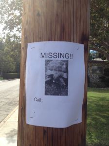 Darwin Missing Sign