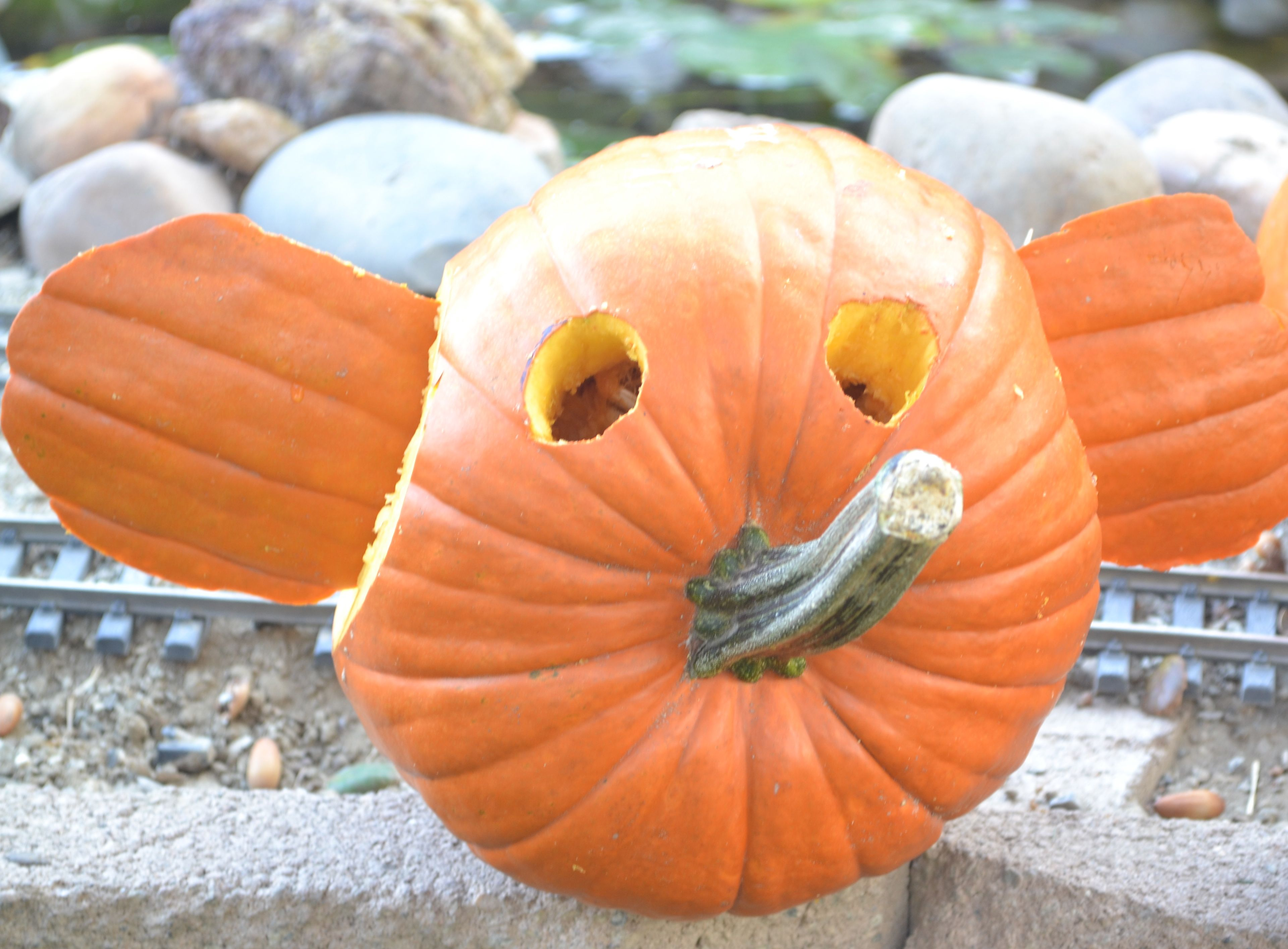 Elephant pumpkin breathelighter for How to carve an elephant on a pumpkin