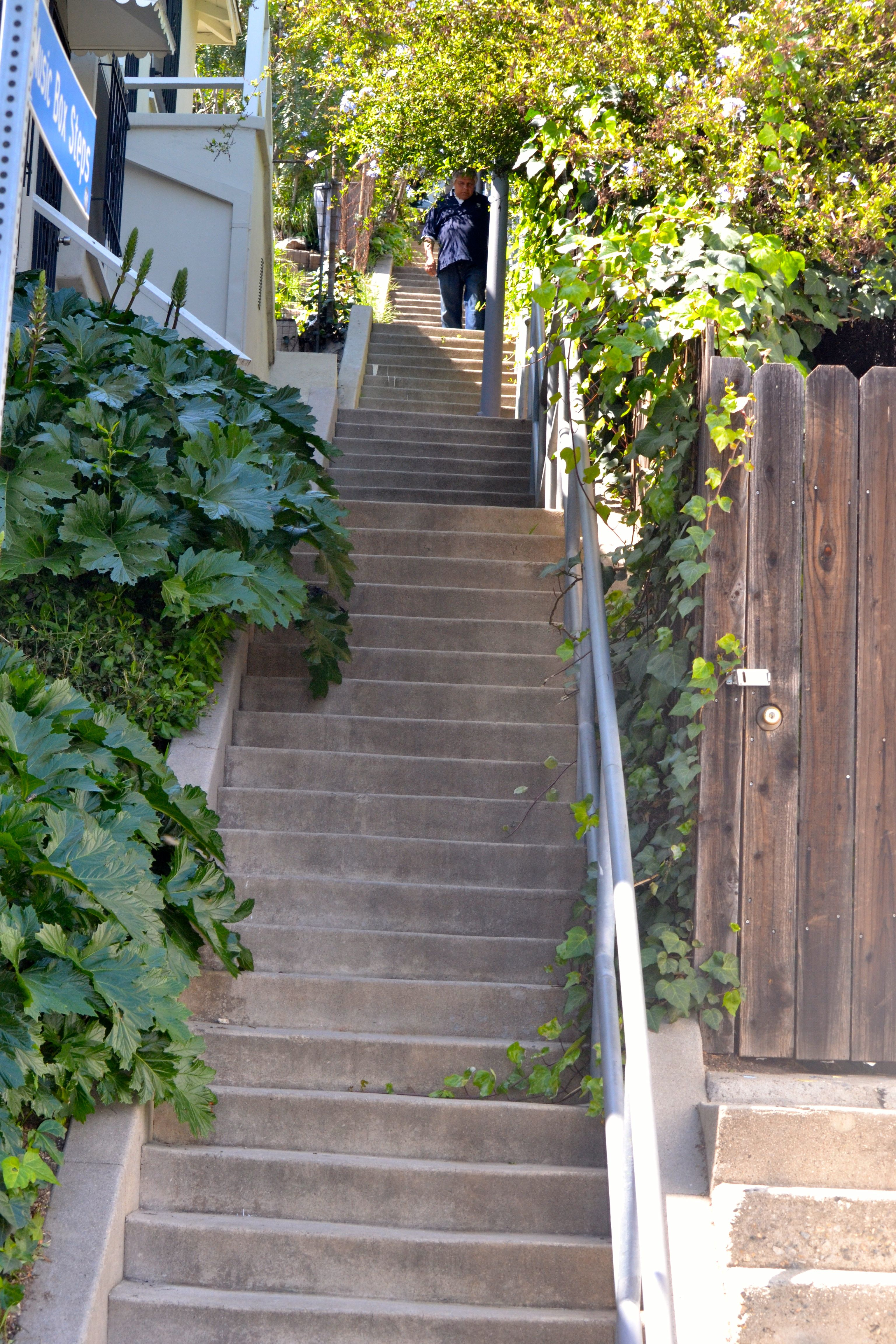 Climbing The Secret Stairs Of Los Angeles Breathelighter