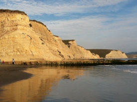 """""""Drakes Bay Seacliffs"""" by Shawnobusa - Own work. Licensed under CC BY-SA 3.0 via Wikimedia Commons - https://commons.wikimedia.org/wiki/File:Drakes_Bay_Seacliffs.JPG#/media/File:Drakes_Bay_Seacliffs.JPG"""