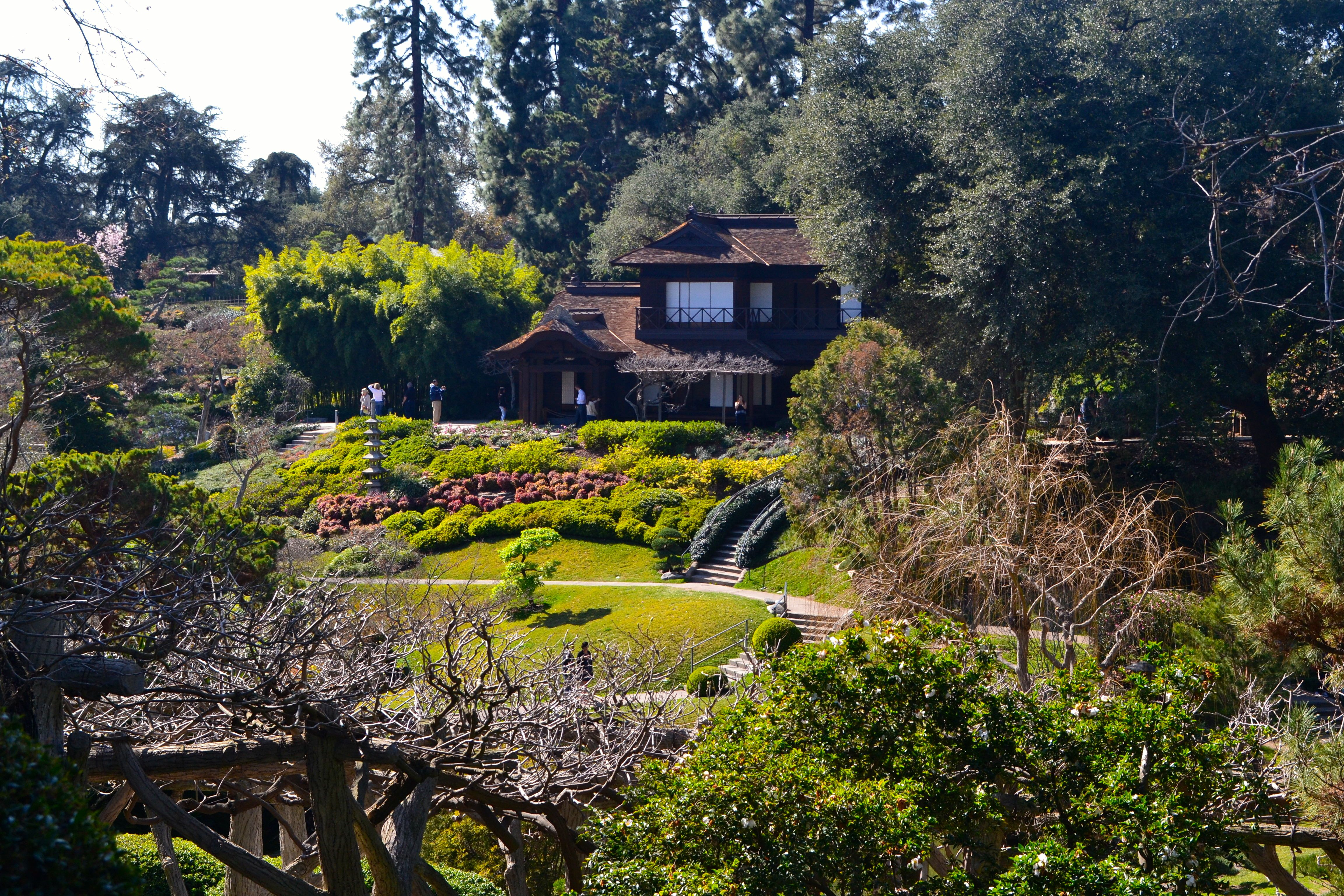 Hertrich Describes His Preparation To Improve U201cthe Small Canyon To The West  Of The Rose Gardenu201d Into A Japanese Garden, Installing Bridges, Walks And  Steps, ...