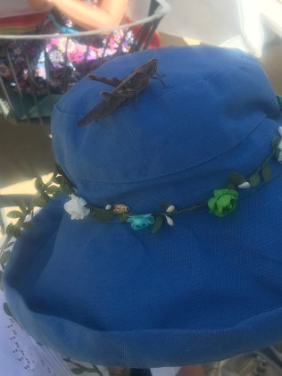 grasshopper on head