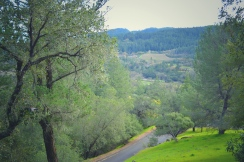 JPEG image-2E57456ADA48-1