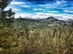 JPEG image-7592EABB0DAA-1